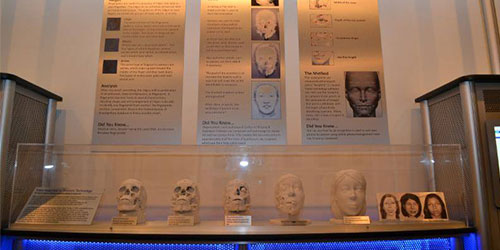 New Forensic Science Exhibit