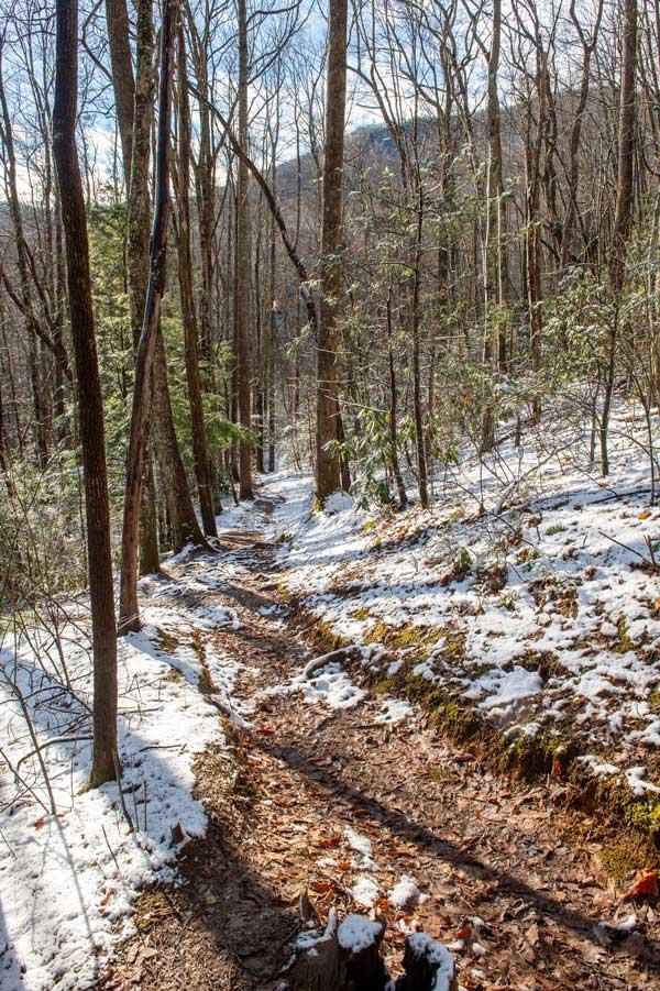 Gabes Mountain Trail (Hen Wallow Falls)