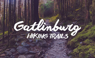 Gatlinburg Hiking Trails: Click to read more