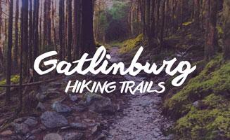 Gatlinburg Hiking Trails: Click to view post