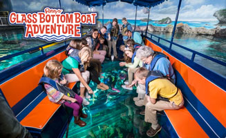 Ripley's Glass Bottom Boats Launch Over Shark Lagoon: Click to read more