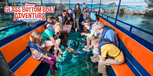 Ripley's Glass Bottom Boat: Click to visit page.