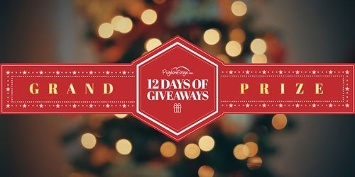 Grand Prize: 12 Days Of Giveaways
