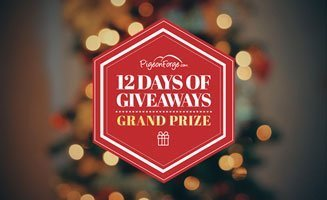 Grand Prize: 12 Days Of Giveaways: Click to read more.