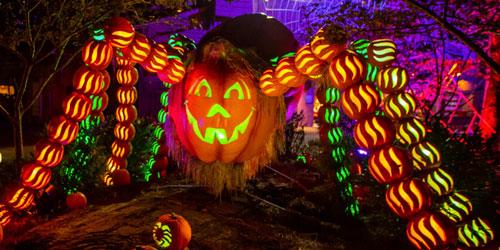 Dollywood Halloween 2020 Dollywood Halloween Events: Harvest Festival, Great Pumpkin LumiNights