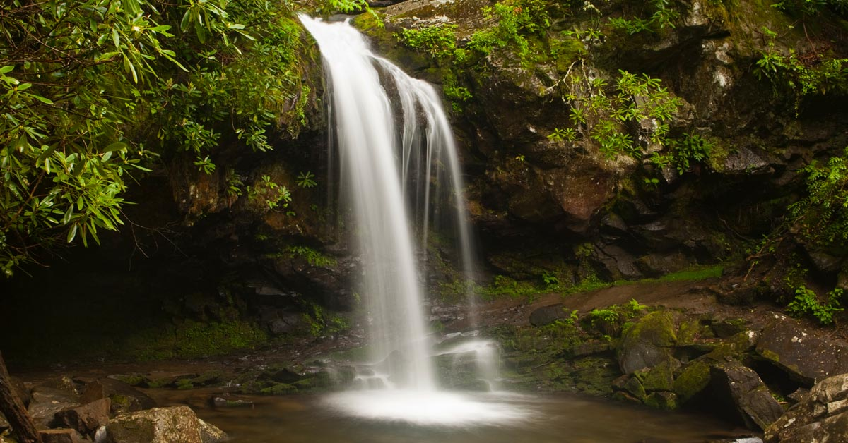 Grotto Falls (Trillium Gap Trail)