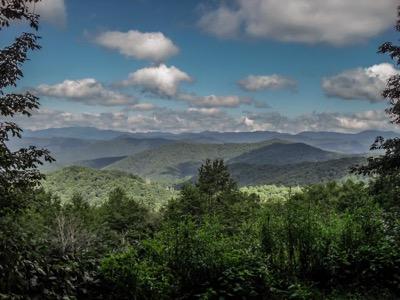 View of Heintooga Overlook