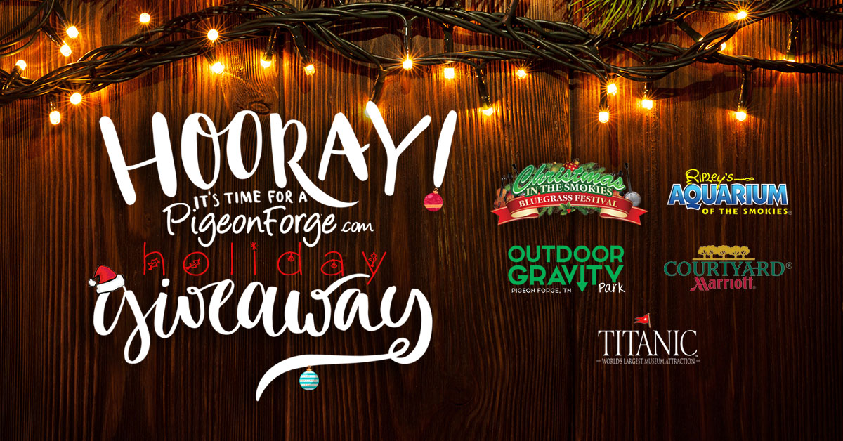 holiday-giveaway-2016