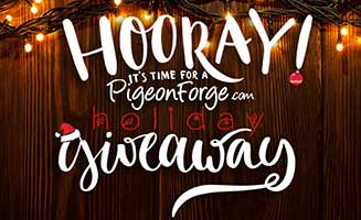Holiday Giveaway 2016: Click to read more.