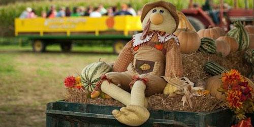 Fall At Kyker Farms: Click to visit page.