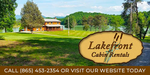 Ad - Lakefront Cabins: Click for website
