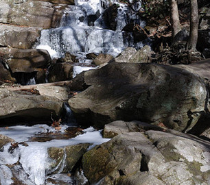 Easy Winter Nature Trails and Winter Hikes