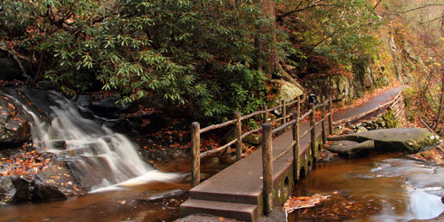 Top Hikes In The Smokies: Click to visit page.