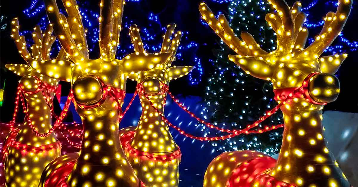Click to open 5 Ways To See Winterfest Lights In Pigeon Forge & Gatlinburg post