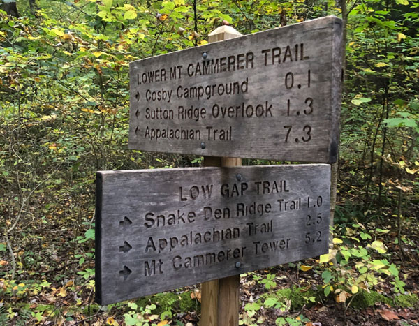 Mt. Cammerer Trail via Low Gap + AT