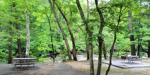 Top Picnic Spots In The Smoky Mountains: Click to visit page.