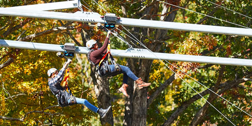 Rowdy Bear Mountain Adventure Park: Click to visit page.