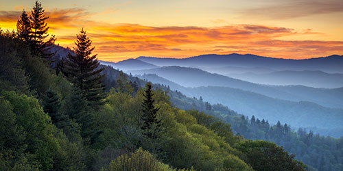 Great Smoky Mountains National Park Info: Click to visit page.