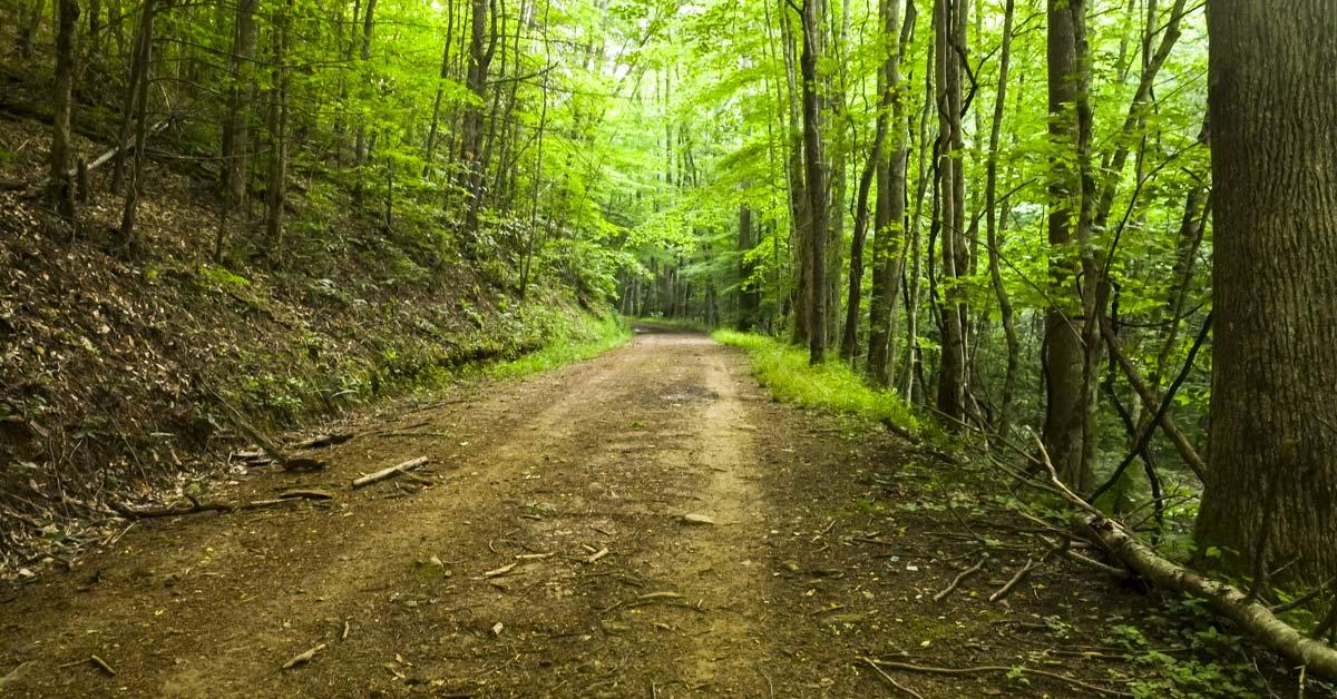 Noland Creek Trail