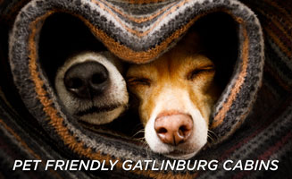 Book Pet Friendly Cabins In Gatlinburg