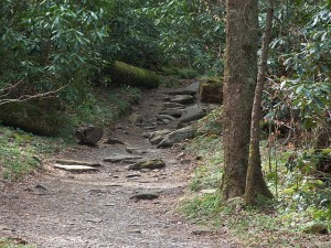 pigeonforge-trails-300x225