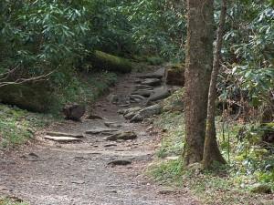 pigeonforge-trails-300x225