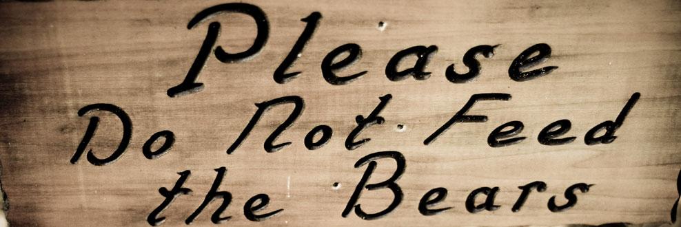 please-do-not-feed-bears