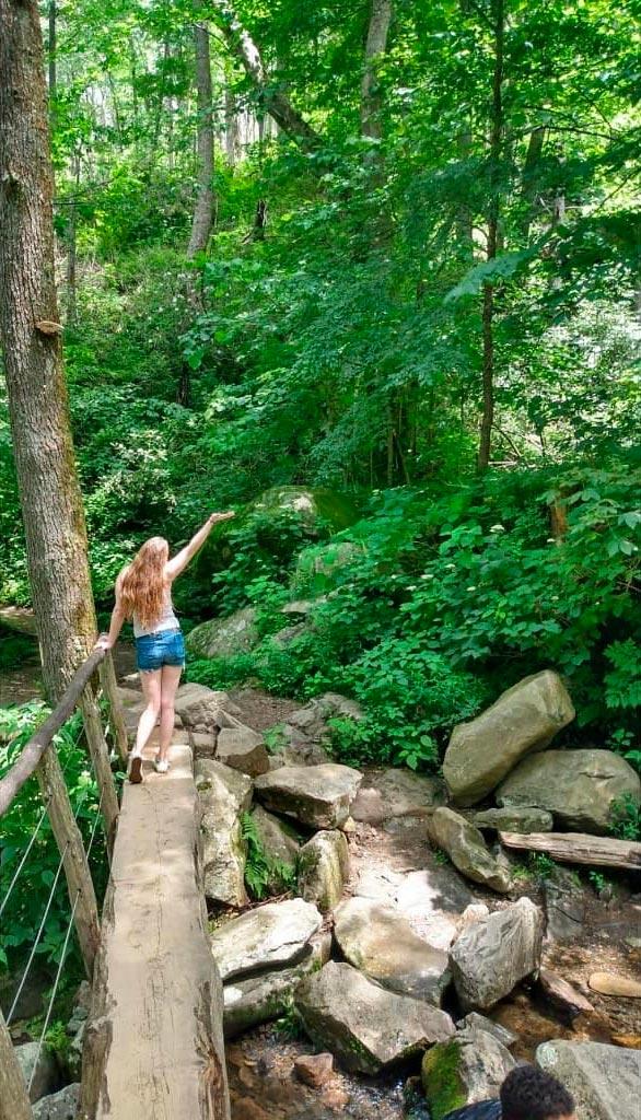 Rainbow Falls Trail (Mt. LeConte)