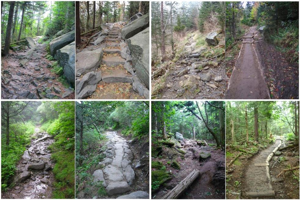 Forney Ridge Trail renovations