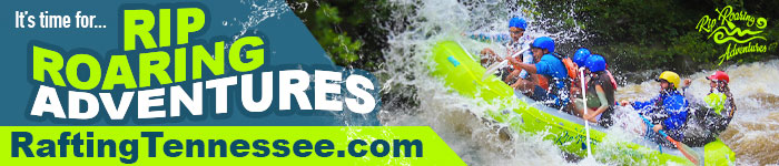 Ad: Click to vote for Rip Roaring Adventures