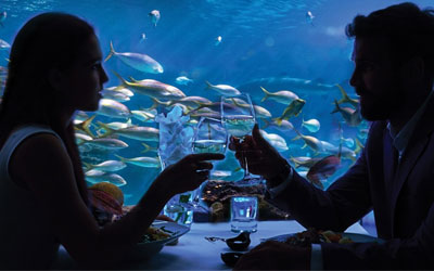 Under The Ocean Valentine's Day Dinner: Click for event info.