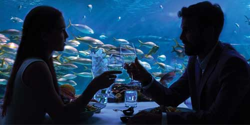 Under The Ocean Valentine's Day Dinner: Click to visit page.
