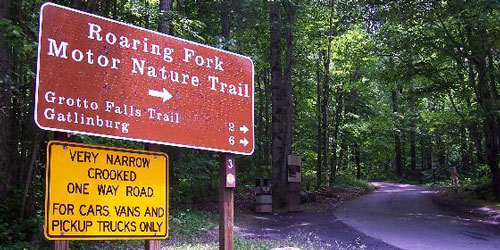 Roaring Fork Motor Nature Trail by J. Stephen Conn