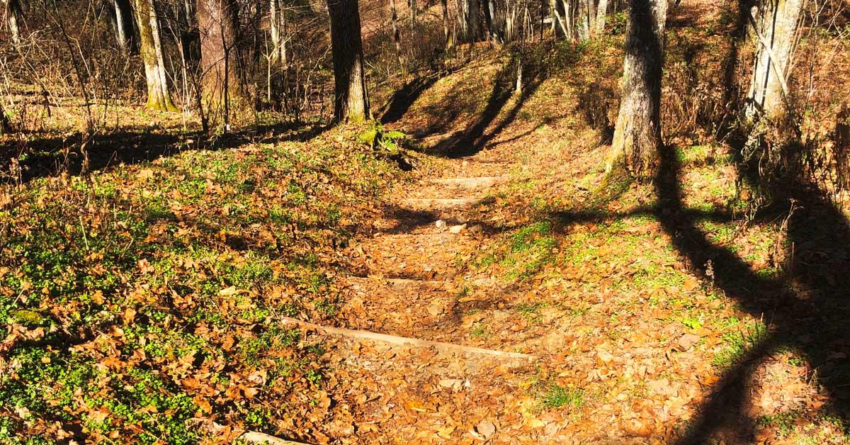 Russell Field Trail