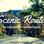 scenic routes_web