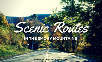 Scenic Routes Through the Smokies: Click to read more