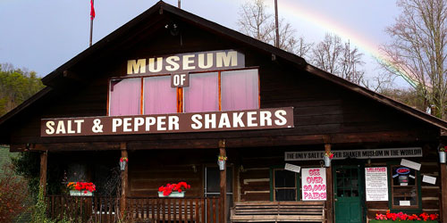 Salt and Pepper Shaker Museum by Aludden1