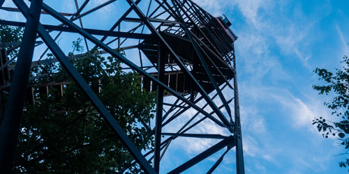 view up the Shuckstack fire tower