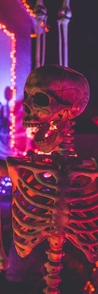 Ripley's Fright Nights: Click to go to page.
