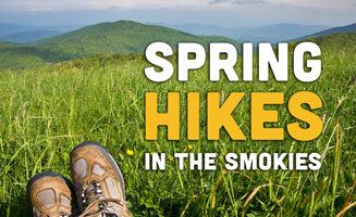 Best Spring Hikes In The Smoky Mountains: Click to read more