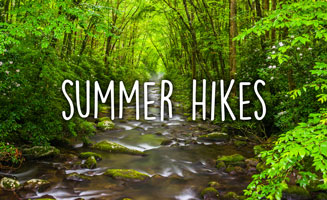 Summer Hikes In The Great Smoky Mountains: Click to read more.