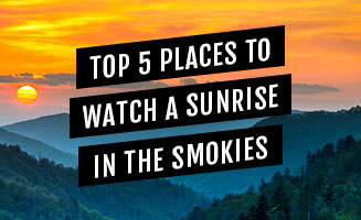 Top 5 Places To See The Sunrise In The Smoky Mountains: Click to view post