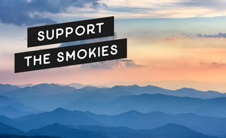 Supporting The Smokies: 13 Ways You Can Still Experience Pigeon Forge & Gatlinburg: Click to read more.