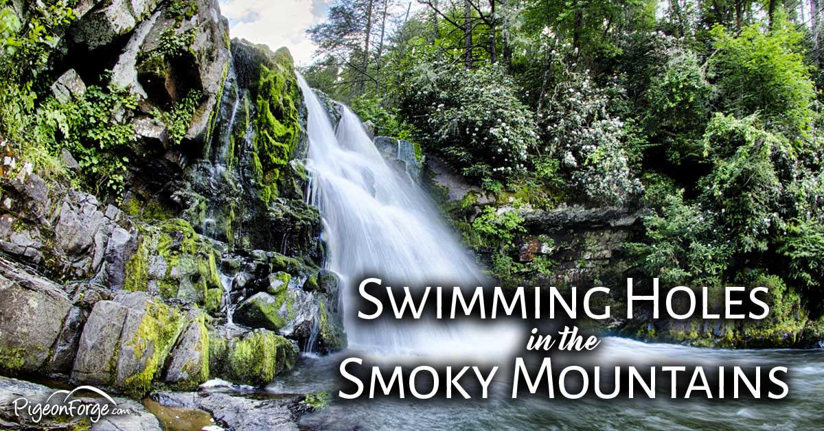 Top 5 Swimming Holes In The Smokies Pigeonforge Com