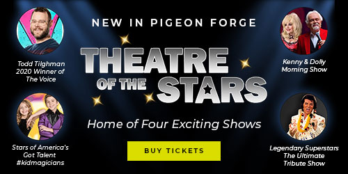 Ad - Theatre Of The Stars: Click to visit website