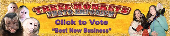 Ad: Click to vote for Three Monkeys Photo Emporium