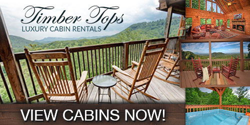 best pigeon forge cabins
