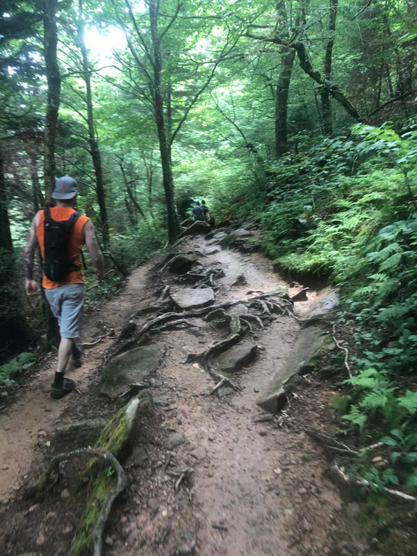 Part of the AT trail to Charlie's Bunion