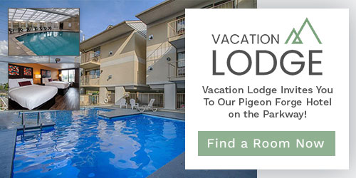 Ad - Vacation Lodge: Click for website
