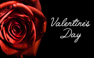 Romance Guide: Valentine's Day In Pigeon Forge: Click to read more